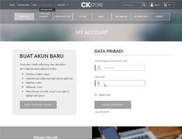 online store web design services
